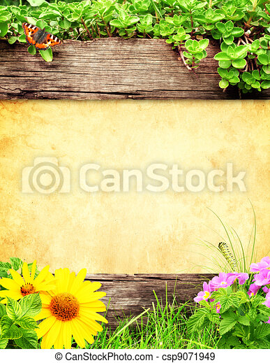Summer background - csp9071949
