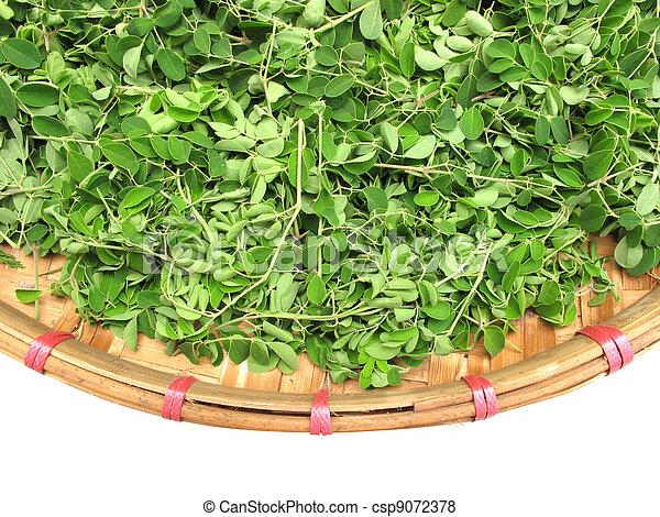 Horse radish leaf in the wicker bas - csp9072378