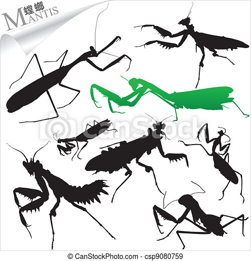 Silhouettes of insects - mantis - csp9080759