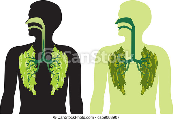 green lung lobes - a breath of fres - csp9083907