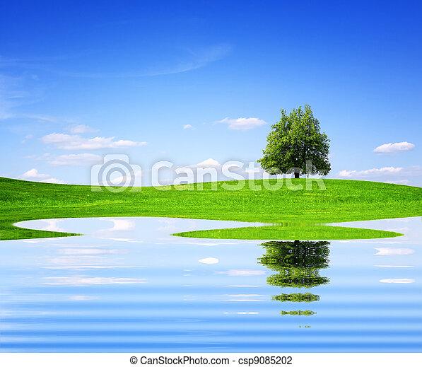 Mother Nature - csp9085202