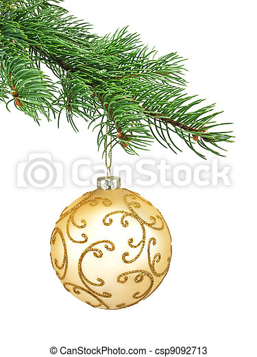 Branch of Christmas tree - csp9092713
