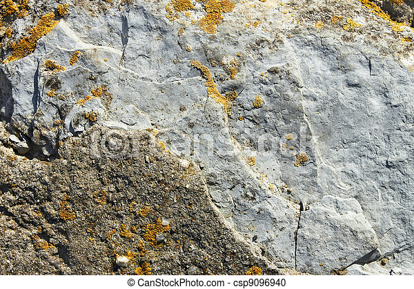 Stone partially covered with lichens - csp9096940