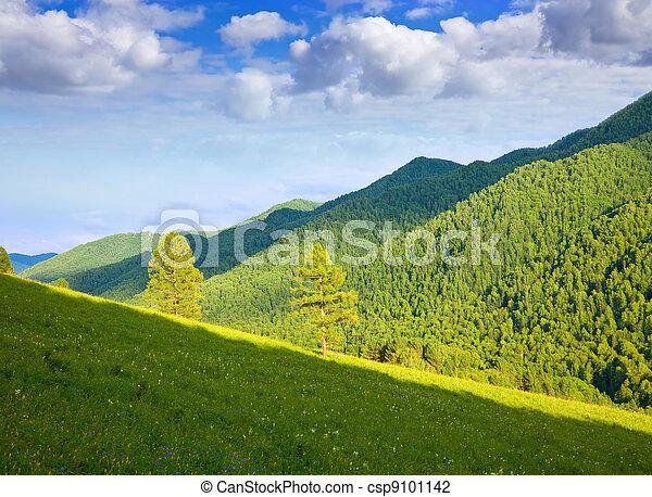 Altai mountains. Siberia  - csp9101142