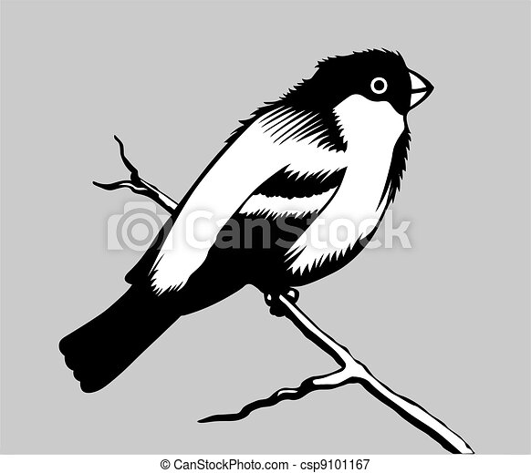 bird silhouette on gray background - csp9101167