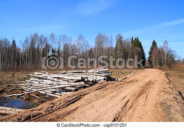 birch log near rural road - csp9101251