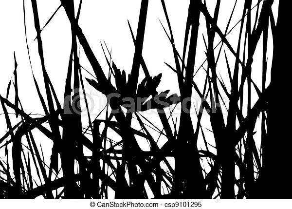 herb silhouette on white background - csp9101295