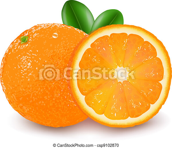Vector Clipart of Orange Fruit csp9102870 - Search Clip ...