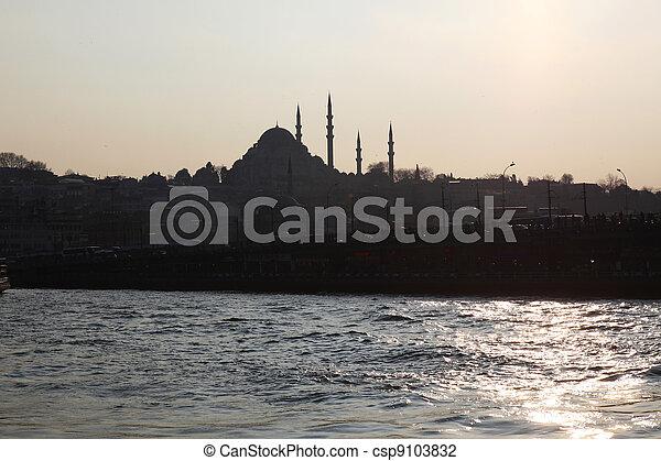 Bosporus Galata Bridge Istanbul - csp9103832