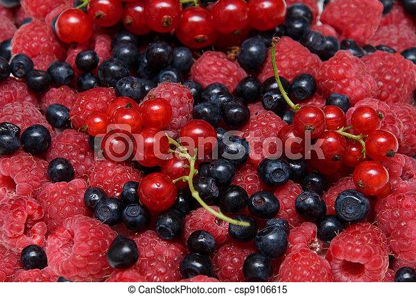 Assorted fresh berries - csp9106615