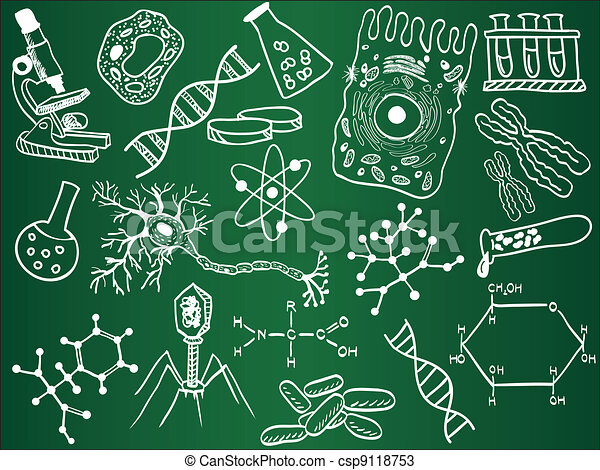 Biology sketches on school board - csp9118753