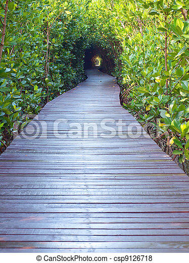 Underpass of trees - csp9126718