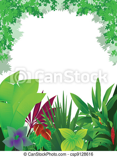 beautiful forest background - csp9128616