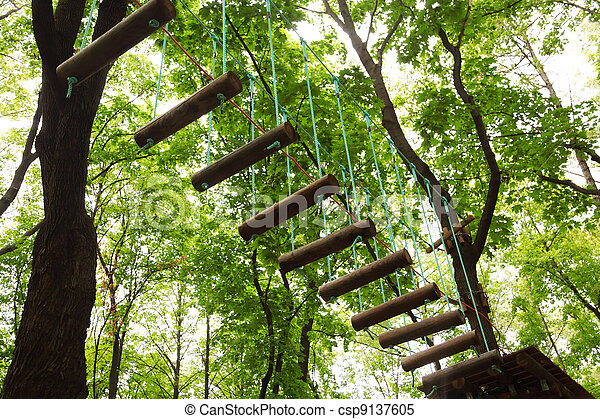 Dangerous ropeway with tether in rope park, trees with green leaves - csp9137605