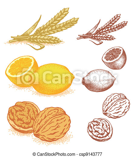 Grain, lemons, walnuts - csp9143777