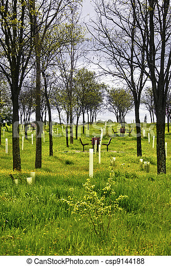 green landscape with chairs - csp9144188
