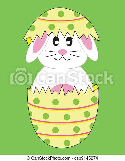 Bunny Rabbit in Easter Egg - csp9145274