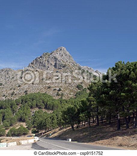 Massive vertical landscape - csp9151752