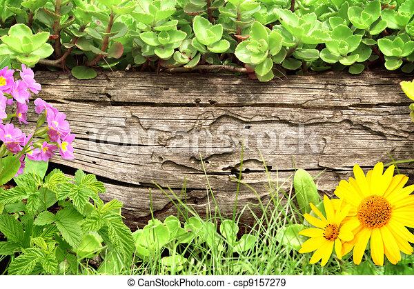 Summer background - csp9157279