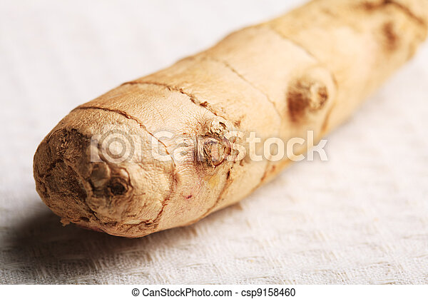Ginger root - csp9158460