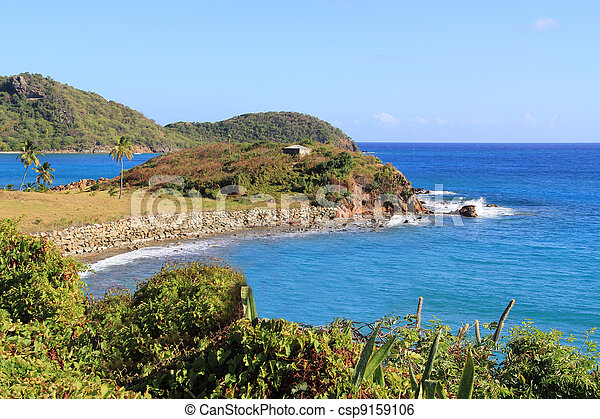 Coastline in Antigua Barbuda - csp9159106