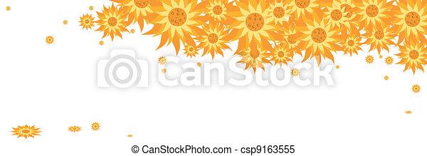 yellow daisy flowers - csp9163555