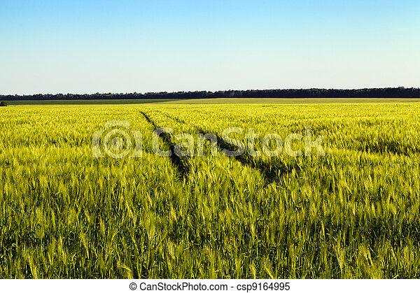 agriculture - csp9164995
