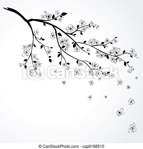 flowering branch of Japanese cherry - csp9168510