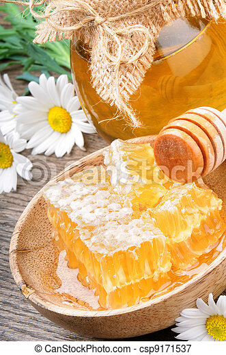 Honey pot and comb - csp9171537