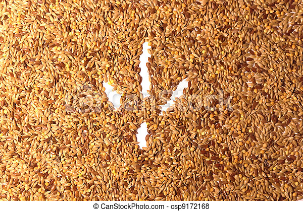 Bird footprint on seed background - csp9172168