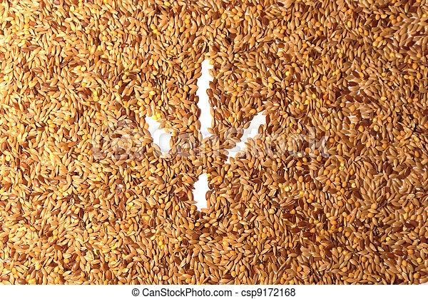 Bird footprint on seed background - csp9172168