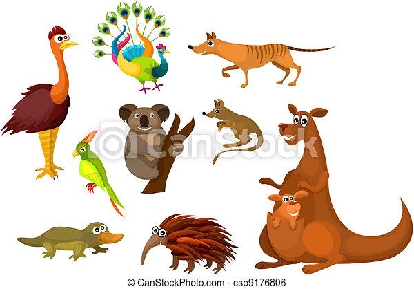 Australian Wildlife Drawings Australian Animals