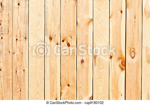 Birch planks - csp9180102