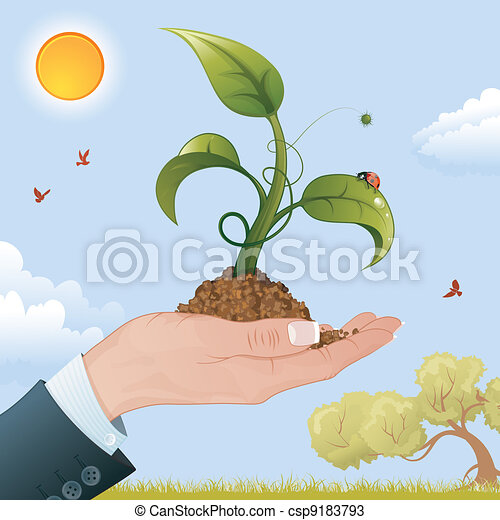 Woman Hand with the Sprout - csp9183793