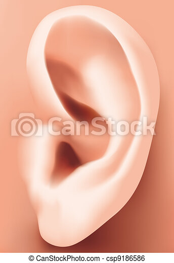 Ear closeup - csp9186586