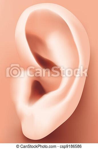 Ear closeup - csp9186586