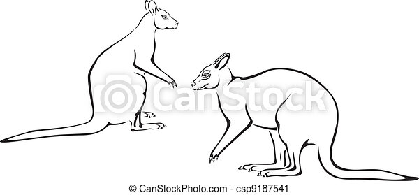 Couple of kangaroo - csp9187541