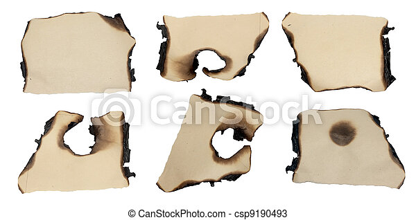 charred scraps of paper on a white background