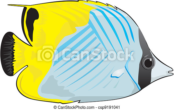 Vector Clip Art of coral fish - marine aquarium - marine ...