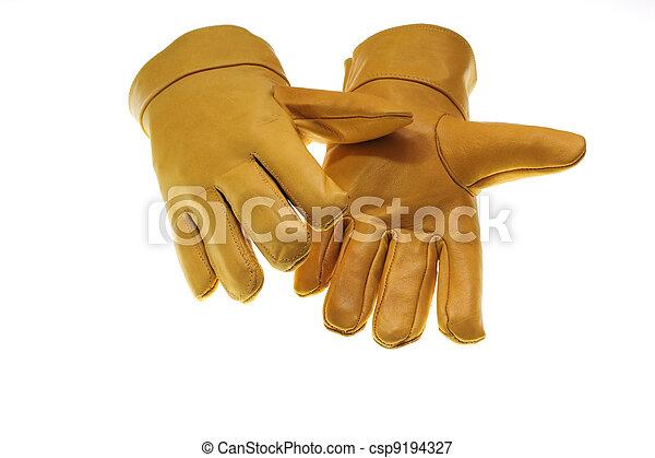 Safety Glove - csp9194327
