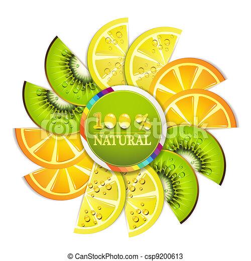 Slice of fruits - csp9200613