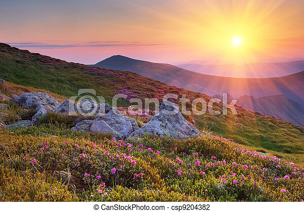 Summer landscape in mountains with the sun.  - csp9204382