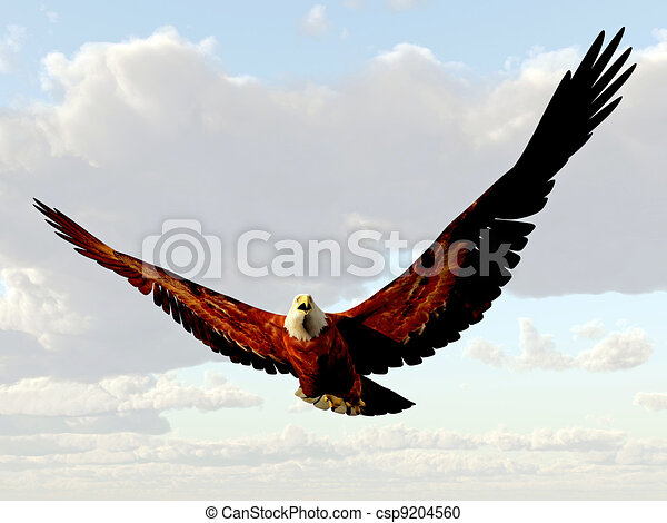 Stock Illustration of american eagle flying in the sky ...