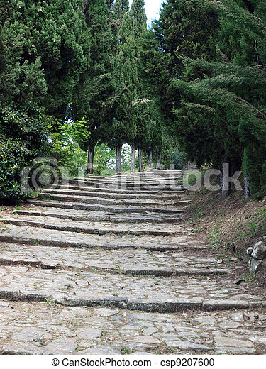 steep stone avenue to the shrine of St. Margaret of Cortona - csp9207600