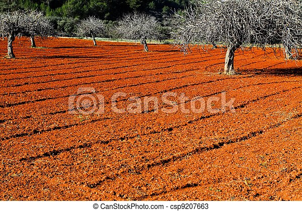 Red cultivated field in Ibiza, Balearic Island, Spain. HDR image - csp9207663