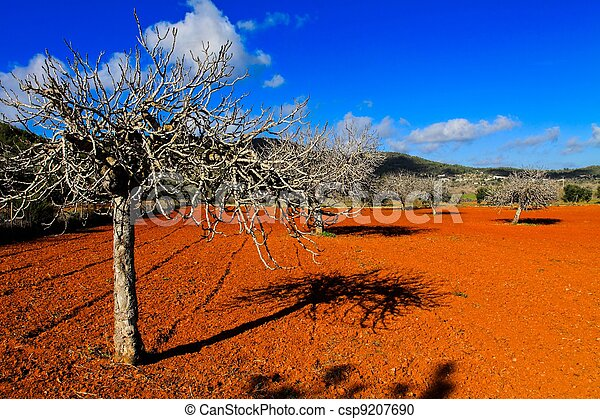 Red cultivated field in Ibiza, Balearic Island, Spain. HDR image - csp9207690