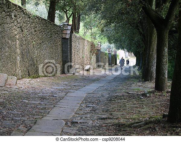 steep stone avenue to the shrine of St. Margaret of Cortona - csp9208044