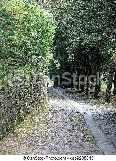 steep stone avenue to the shrine of St. Margaret of Cortona - csp9208045