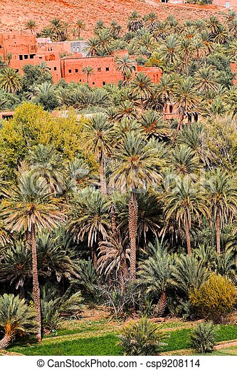 Oasis in Morocco. HDR image. - csp9208114