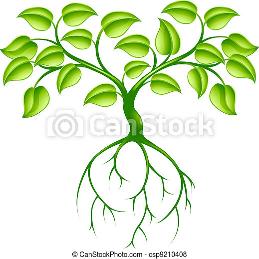 Green tree and roots - csp9210408